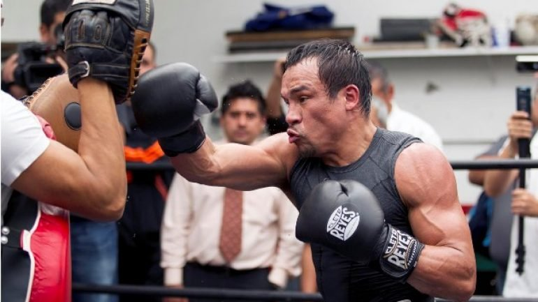 Juan Manuel Marquez will fight on in 2015