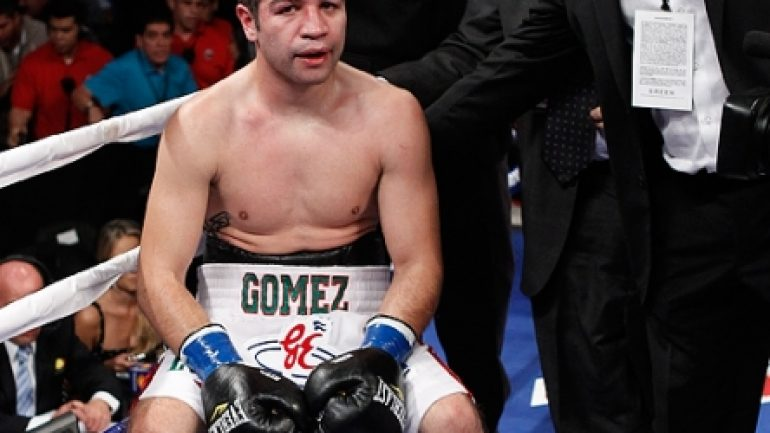 Alvarez-Gomez fight