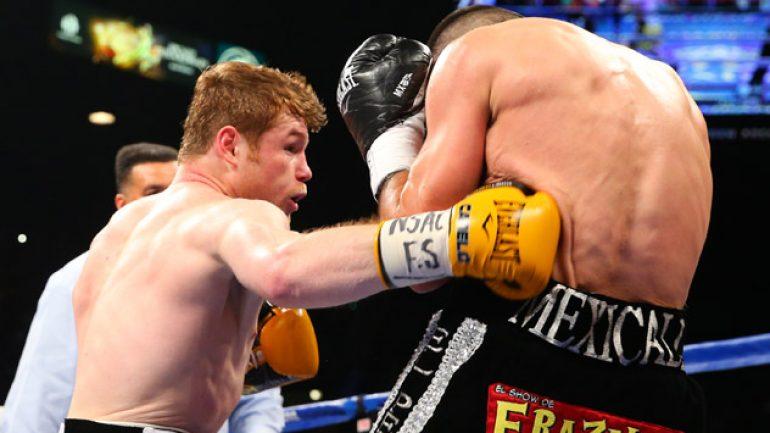 Canelo Alvarez tames Alfredo Angulo, stops 'El Perro' in 10 rounds