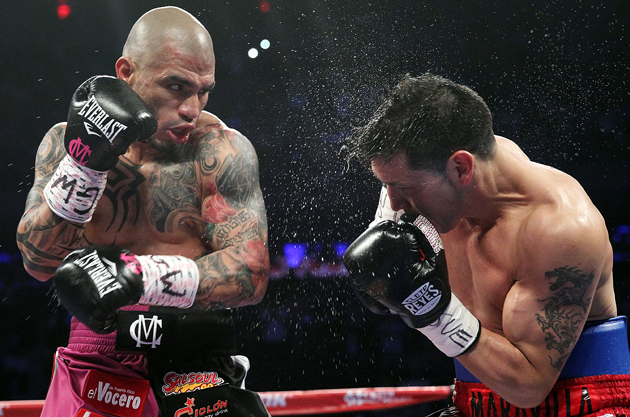 Miguel Cotto punished Sergio Martinez with his left hook throughout their June 7 middleweight championship in New York, N.Y. Cotto won the THE RING and WBC titles with a 10-round TKO. Photo by Chris Farina-Top Rank