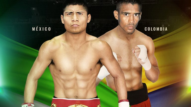 RingTV to stream Argumedo-Mendoza IBF 105-lb. title bout tonight
