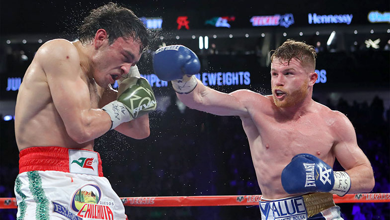 Prelude to Destiny The best thing to come out of Canelo-Chavez was the announcement of Canelo-GGG