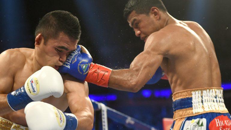 Roman Gonzalez vs. Brian Viloria by Naoki Fukuda